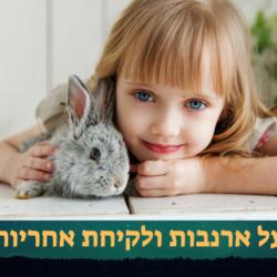 על ארנבות ולקיחת אחריות