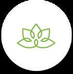 icon_health